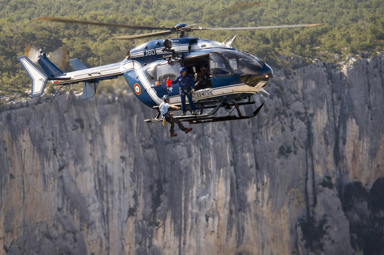 F-MJBD msn 9019 (© SIRPA Gendarmerie)